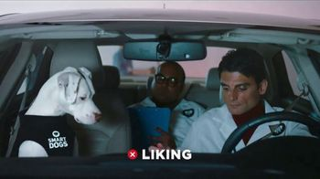 GEICO TV Spot, 'Introducing Smartdogs'