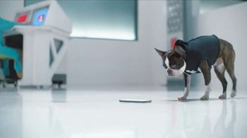 GEICO TV Spot, 'Introducing Smartdogs' - Thumbnail 9