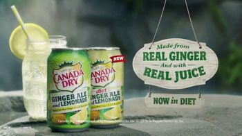 Canada Dry Ginger Ale and Lemonade TV Spot, 'Fountain' - Thumbnail 9