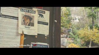 A Dog's Way Home - Alternate Trailer 27