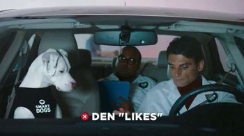 GEICO TV Spot, 'Perros inteligentes' [Spanish] - Thumbnail 5