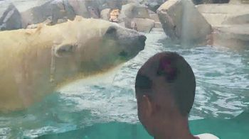Missouri Division of Tourism TV Spot, 'Theme Parks' - Thumbnail 7