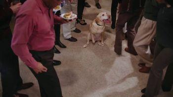 Stanley Steemer $99 Carpet Special TV Spot, 'That's Gross: Party' - Thumbnail 2