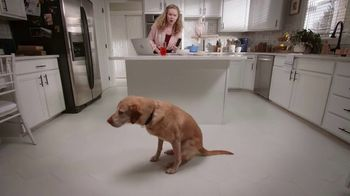 Stanley Steemer Tile & Grout Special TV Spot, 'That's Gross: Dog' - Thumbnail 4