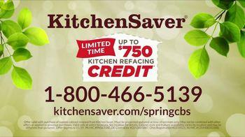 Kitchen Saver TV Spot, 'Spring Credit' - Thumbnail 8