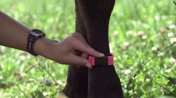 Organic Valley TV Spot, 'We Put Fitness Trackers on Cows' - Thumbnail 7