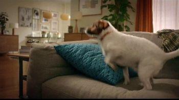 Lysol Disinfectant Max Cover TV Spot, 'El cojín favorito' [Spanish]