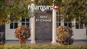 Heartgard Plus TV Spot, 'No Way to Hide' - Thumbnail 10