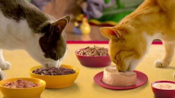 Friskies TV Spot, 'Friskies World: So Many Choices' - Thumbnail 8