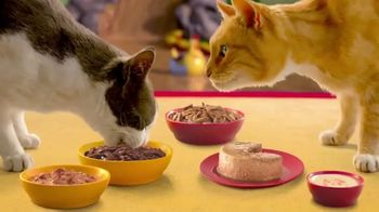 Friskies TV Spot, 'Friskies World: So Many Choices'