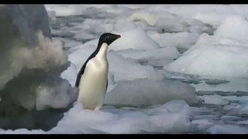 Penguins - Alternate Trailer 17