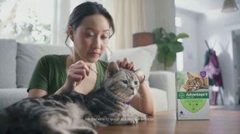 Bayer Advantage II TV Spot, 'Good Friends' - Thumbnail 6