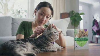 Bayer Advantage II TV Spot, 'Good Friends' - Thumbnail 7