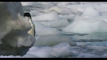 Penguins - Alternate Trailer 15
