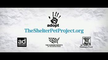 The Shelter Pet Project TV Spot, 'A Dog Way's Home: Bella' Featuring Bryce Dallas Howard - Thumbnail 7