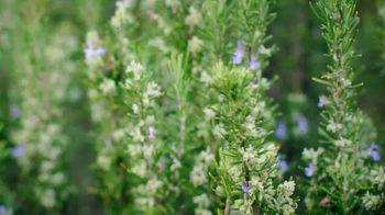Herbal Essences bio:renew TV Spot, 'Real Botanicals' - Thumbnail 2