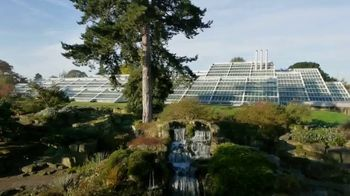 Herbal Essences bio:renew TV Spot, 'Real Botanicals' - Thumbnail 7