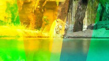 Busch Gardens TV Spot, 'Taking Thrills to New Heights' - Thumbnail 4