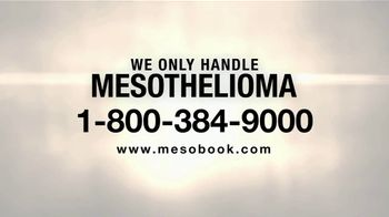 MRHFM Law Firm TV Spot, 'Only Meso' - Thumbnail 4