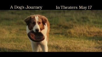 A Dog's Journey - 3980 commercial airings