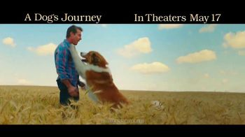 A Dog's Journey - Thumbnail 10