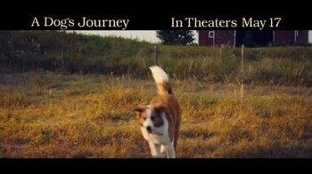 A Dog's Journey - Thumbnail 2