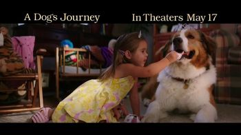 A Dog's Journey - Thumbnail 5