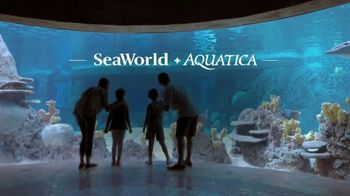 SeaWorld TV Spot, 'Seven Seas Craft Beer & Food Festival: Three Days of Fun' - 1 commercial airings