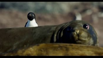 Penguins - Alternate Trailer 34