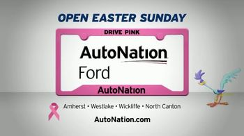 AutoNation Super Zero Event TV Spot, '2018 and 2019 Ford Models' Song by Bonnie Tyler - Thumbnail 5