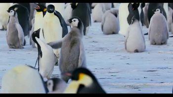 Penguins - Alternate Trailer 29