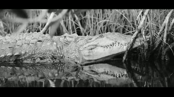 Hell's Bay Boatworks TV Spot, 'The Florida Everglades' - Thumbnail 4