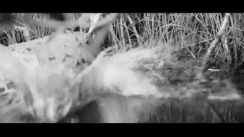 Hell's Bay Boatworks TV Spot, 'The Florida Everglades' - Thumbnail 5