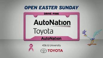 AutoNation Super Zero Event TV Spot, '2019 Toyota RAV4 LE' Song by Bonnie Tyler - Thumbnail 5