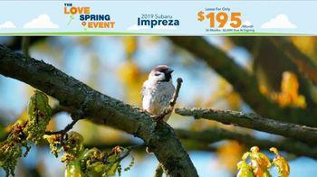 Subaru Love Spring Event TV Spot, '2019 Impreza' [T2] - Thumbnail 1