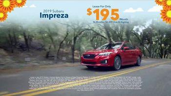Subaru Love Spring Event TV Spot, '2019 Impreza' [T2] - Thumbnail 7