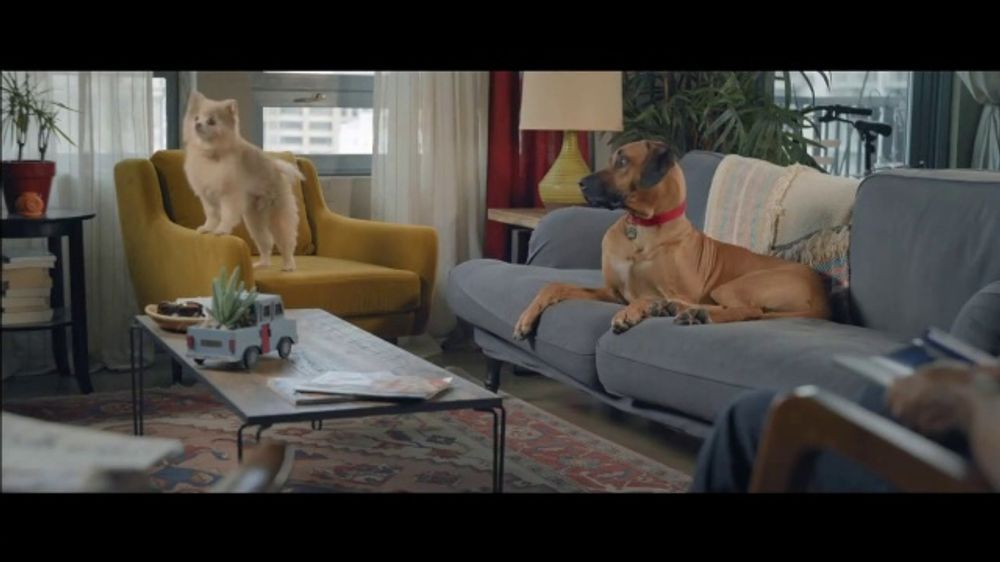Wells Fargo Home Mortgage TV Commercial, 'Lulu and Lobo' - Video