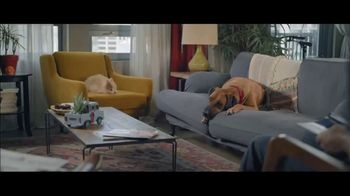 Wells Fargo Home Mortgage TV Spot, 'Lulu and Lobo' - Thumbnail 1