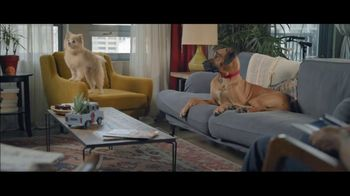 Wells Fargo Home Mortgage TV Spot, 'Lulu and Lobo'