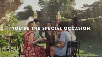 Grey Goose Vodka TV Spot, 'Live Victoriously'