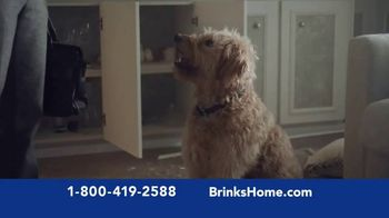 Brinks Home Security TV Spot, 'Buster: Save on Your Home Security System' - Thumbnail 2