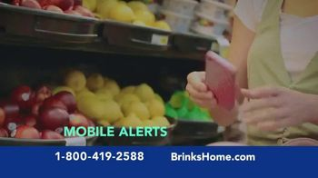 Brinks Home Security TV Spot, 'Buster: Save on Your Home Security System' - Thumbnail 7