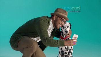 Apoquel TV Spot, 'Allergic Itch'