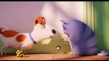 The Secret Life of Pets 2 - Alternate Trailer 11