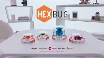 Hexbug Micro Robotic Creatures TV Spot, 'Fire Ant, Beetle, Spider & Scarab' - Thumbnail 10