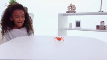Hexbug Micro Robotic Creatures TV Spot, 'Fire Ant, Beetle, Spider & Scarab' - Thumbnail 8