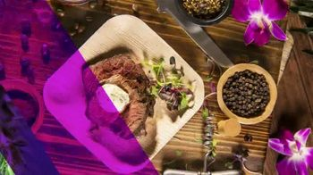 Busch Gardens Food & Wine Festival TV Spot, 'All That's New: Silver Pass' - Thumbnail 4