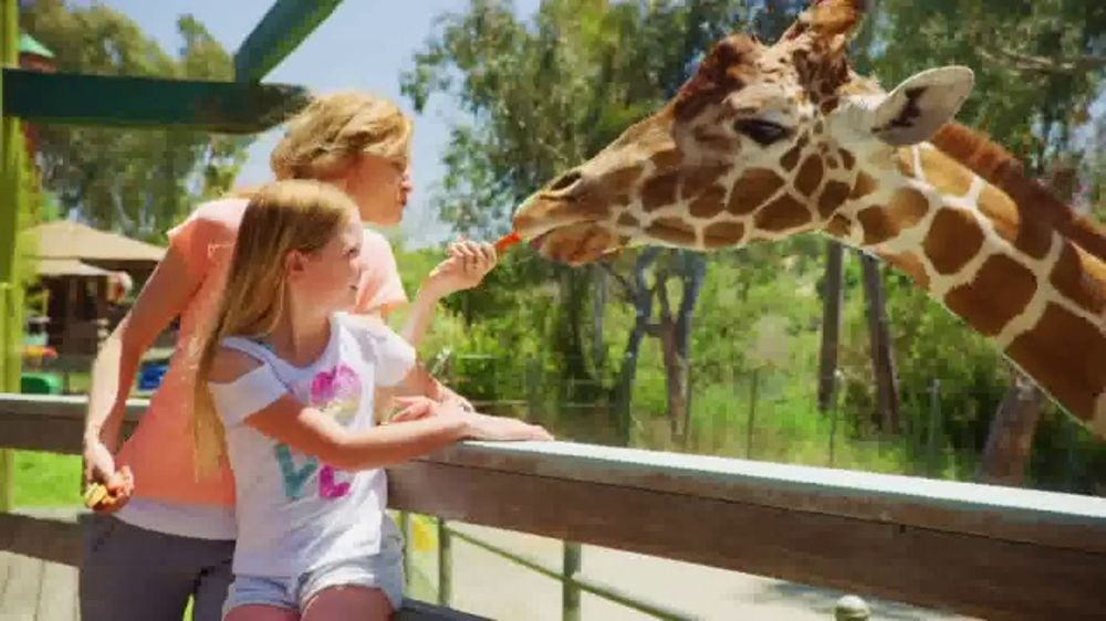 Six Flags Spring Sale TV Commercial, 'Full Bloom: 65 Percent'