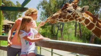 Six Flags Spring Sale TV Spot, 'Full Bloom: 65 Percent' - Thumbnail 9