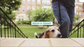 The Shelter Pet Project TV Spot, 'Everyday People' - Thumbnail 3